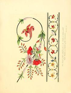 Oriental memoirs : illustrated by engravings from original drawings by William Jackson Hooker Clip Art Vintage, Art Decor, Art Nouveau Design, Islamic Art, Drawings, Flower Drawing, Original Drawing, Prints, Pattern Art