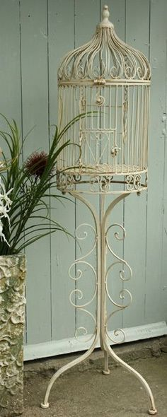 Shabby Chic,Vintage, floor standing birdcage,bird cage/ planter New The Best of shabby chic in - Home Decor Ideas Vintage Birds, Vintage Shabby Chic, Shabby Chic Homes, Shabby Chic Style, Shabby Chic Decor, Antique Bird Cages, Bird Cage Stand, Beach Cottage Style, Shabby Chic Furniture