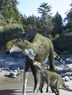 Brachylophosaurus canadensis by James Kuether on DeviantArt