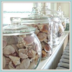 Coastal Home Decor. Shells sea urchins sea glass collections in apothecaries on windowsill. It's a Beach Cottage Life. Beach House chic!