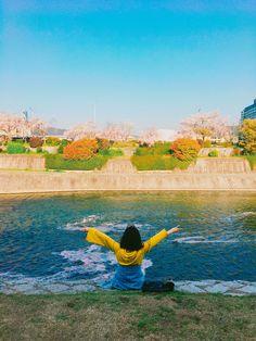 (웃긴자료) 일본의 벚꽃 근황.JPG - 행복한 유머, 웃긴대학에 오셨습니다 !!