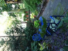 Love the blue cafe set