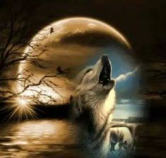 Wolves are a sign that silent nature surrounds you.                                                                                                                                                      More