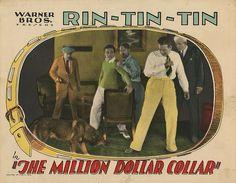 Lobby Card from the film The Million Dollar Collar