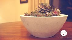 Create this easy to make modern planter with two cheap plastic bowls and some left over concrete for an impressive accent piece! Add a succulent or any other plant for an awesome accent piece.  DIY Modern Concrete Bowl Planter | Modern Builds | EP. 1