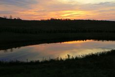 Sunrise over pond at C&A Trees near Clarion, PA.