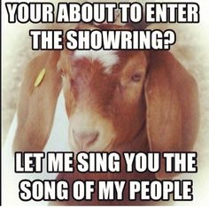 Quotes About Goats Simple 14 Goat Quotes For Every Occasion  Pinterest  Goats Community And .