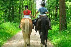 #rutas #caballo #turismo #granada
