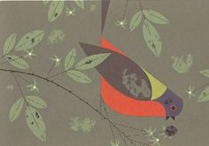 Painted Bunting - Ford Times Silkscreen Print