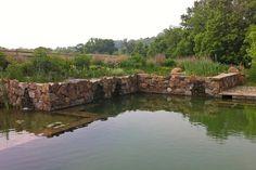 Natural Swimming Pool ‹ Jonathan Alderson Landscape ArchitectsJonathan Alderson Landscape Architects