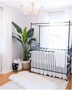 Bring on the bun in the oven because I need this room in my life