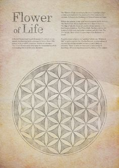 Flower of life, sacred geometry