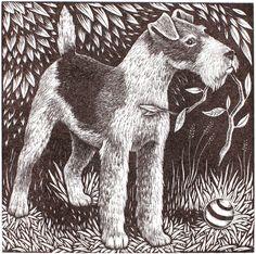 Fox Terrier by Rosamund Fowler