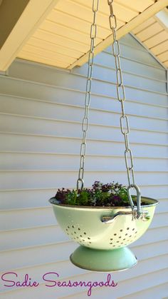 No Strain to Hang- Vintage Colander Planter: Taking a cute vintage colander and turning it into a hanging basket!