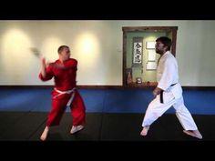 """Démonstration de l'utilité de l'aikido dans un contexte """"contemporain"""" : défense face à un attaquant armé d'une batte de baseball !"""