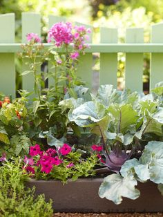 Perennials bring a mix of color and texture to your landscape! More curb appeal on a dime: http://www.bhg.com/home-improvement/exteriors/curb-appeal/curb-appeal-on-a-dime/?socsrc=bhgpin081113planterbeds=7