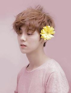 Image de kpop, pink, and exo luhan Luhan Exo, Kaisoo, Chanbaek, Kpop Exo, Exo Ot12, F4 Boys Over Flowers, Flower Boys, Wattpad, Shinee