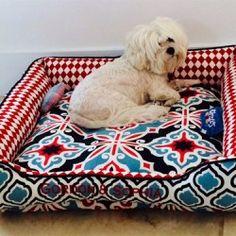 Maltese cuddle bed