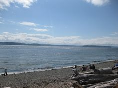 View from Lincoln Park Beach by Fauntleroy Ferry Terminal.