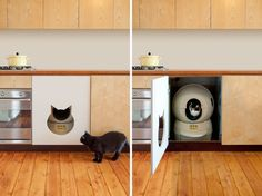 Kitty Cutouts and Deluxe Dog Beds: 15 Awesome Kitchen Built-Ins for Your Pets Hidden Litter Boxes, Kitchen Built Ins, Litter Robot, Light Grey Paint Colors, Custom Dog Beds, Dog Control, Animal Room, Cat Furniture, Kitchen Furniture