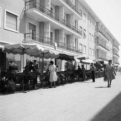 Lisboa anos 40, dia de mercado no Bairro de Alvalade.