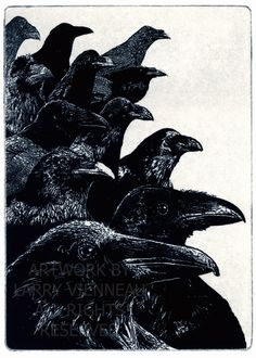 Raven ( raven, crow bird) series- The Jury -  Aquatint etching Blue Black Ink. 5 x 7 inch 2012 Larry Vienneau Jr. Etsy Ravenstamps