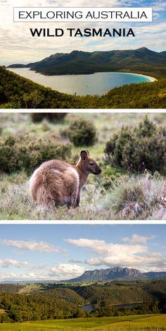 Notoriously unpredictable weather, untamed countryside... Tasmania's unique landscape is well worth a visit.  #tasmania #australia #wanderlust #adventure