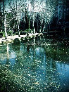 Estanque. Turó  Park, Barcelona