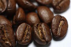Koffie, alcohol en tabak: de feiten - Ons oer-Hollandse bakkie troost of alle sterke Italiaanse varianten?