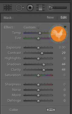 Lightroom 4 Tutorial: Start to Finish Edit
