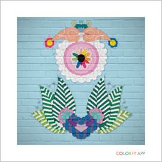 #colorfly
