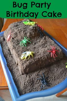 bug party birthday cake for kids - perfect & easy recipe idea for boys in the spring or summer