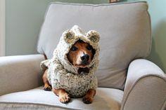 I Can Bear-ly Wait