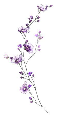 Breathtaking Flower Tattoos Ideas – Brenda O. - diy tattoo images - 55 Breathtaking Flower Tattoos Ideas Brenda O. Floral Tattoo Design, Flower Tattoo Designs, Tattoo Ideas Flower, Tattoo Flowers, Flower Tattoo Meanings, Tattoo Floral, Small Flower Tattoos, Small Tattoos, Delicate Flower Tattoo