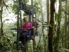 Bicicleta nas alturas permite pedalar por cima da floresta no Equador | Guia Viajar Melhor