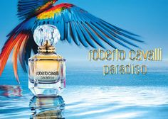 Roberto Cavalli - Roberto Cavalli Paradiso 2015. Paradiso is announced as a floral - woody fragrance of the Mediterranean and as a heavenly bouquet that opens with citrus notes of bergamot and mandarin, blending with the floral heart of jasmine. The composition ends with warm woody accords of cypress, parasol pine and pink laurel.