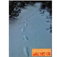 ¡Buenos y nevados días Runners! #MataroRace