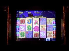 Slot bonus win on Love Birds!