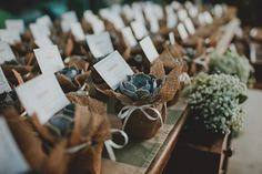 Succulents wrapped in hessian as weddin g favours