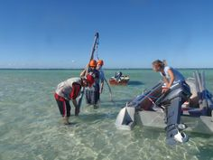 Small drop in sea level had big impact on southern Great Barrier Reef