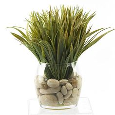 D and W Silks Wild Grass Silk Plant with Glass Dish *** Read more reviews of the product by visiting the link on the image.