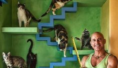 A contractor in Santa Barbara, California totally transformed his home for his cats — and for a good cause.