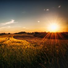 Driving around this 'field of sun' passed me. I had to stop to take a picture of this great sunset. Hope you like it too!