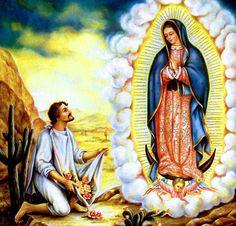 Nossa Senhora de Guadalupe ~ Sacra Galeria