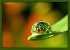 Ball Crystal Drop