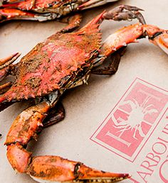 Succulent, Heavy & Sweet Steamed and Seasoned Maryland Blue Crabs Shipped Anywhere in the USA! During our summer crab sale save 12% on any order of blue crabs. Use code summer12. restrictions apply. only while supplies last. Order at www.iLoveCrabs.com