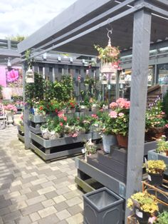 Next - Home & Garden - Home - Decorating Centre - Garden - Lifestyle - Layout - Landscape - Customer Journey - Visual Merchandising - www.clearretailgroup.eu