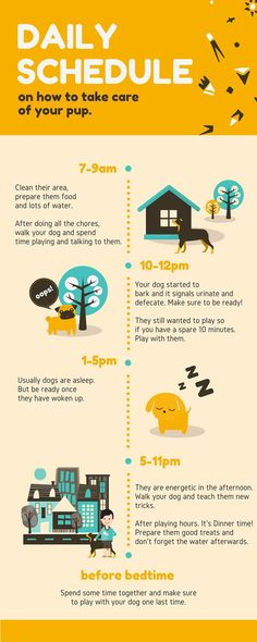 Daily schedule for taking care of your pets. Daily schedule for taking care of your pets. Dog Training Methods, Basic Dog Training, Training Your Puppy, Potty Training, Training Classes, Training Dogs, Crate Training, Puppy Schedule, Puppy Training Schedule