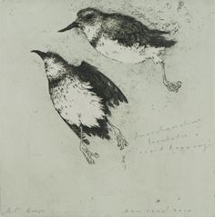 Ben Reid, Right Leaning, drypoint,intaglio and relief on 240 x 240 mm paper, from an edition of Contact gallery regarding availability. Victorian Wallpaper, Bird Art, Animal Drawings, Drawing S, Printmaking, Paper Art, Art Gallery, Birds, Portrait