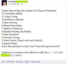 12 Days of Band Camp ;) but I would change it to 2 clarinets